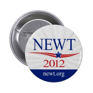 Newt Gingrich para el presidente 2012 Pins