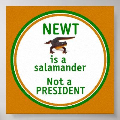 NEWT Gingrich Is Not A PRESIDENT 2012 Newt is a salamander Republican ...