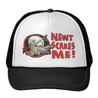 Newt Gingrich Scares Me Hats