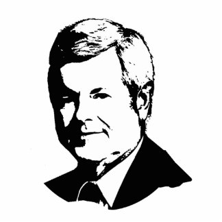 NEWT GINGRICH TALKING HEAD PHOTO CUT OUT