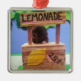 Newton quiere vender un poco de limonada adorno navideño cuadrado de metal
