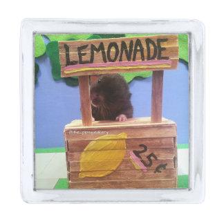 Newton quiere vender un poco de limonada pins plateados