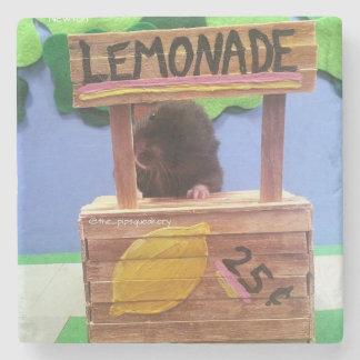 Newton quiere vender un poco de limonada posavasos de piedra