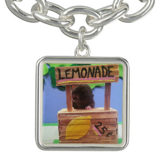 Newton quiere vender un poco de limonada pulsera con dije