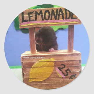 Newton Wants to Sell Some Lemonade Classic Round Sticker