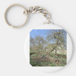 Newton's Tree at Woolsthorpe Manor Keychain