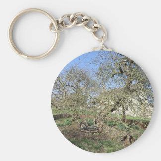 Newton's Tree at Woolsthorpe Manor Keychains