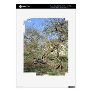 Newton's Tree at Woolsthorpe Manor iPad 3 Decals