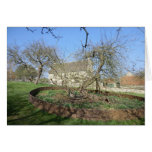 Newton's Tree at Woolthorpe Manor Card