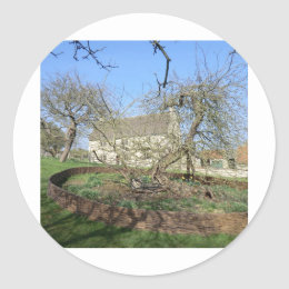 Newton's Tree at Woolthorpe Manor Classic Round Sticker