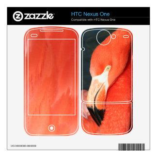 Nexo rosado magnífico de HTC del flamenco una piel HTC Nexus One Skins