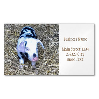 next cute piglet magnetic business card