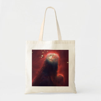 NGC2264 Cone Nebula Canvas Bags