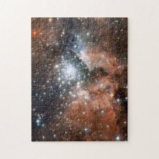 NGC3603 Nebula Puzzle