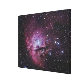 NGC 281, Emission Nebula and Open Cluster in Cassi Canvas Print