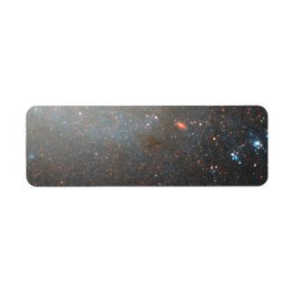 NGC 3021 NICMOS:ACS Detail 2 Custom Return Address Label