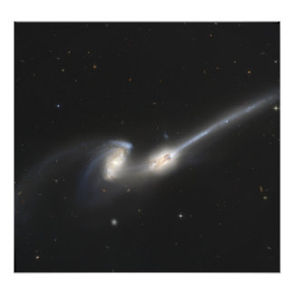 NGC 4676, also known as the Mice Galaxies Photo Print