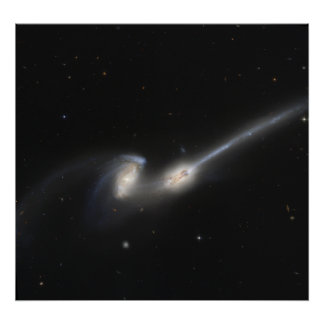 NGC 4676, also known as the Mice Galaxies Poster