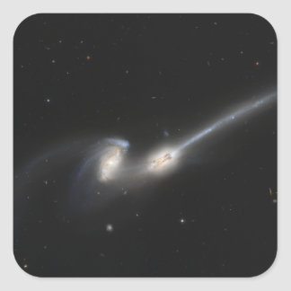 NGC 4676, also known as the Mice Galaxies Square Sticker