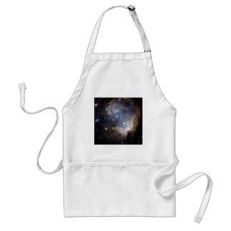 NGC 602 bright stars NASA Adult Apron