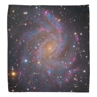 NGC 6946: The 'Fireworks Galaxy' Bandana