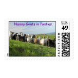 NGIP Postage Stamps