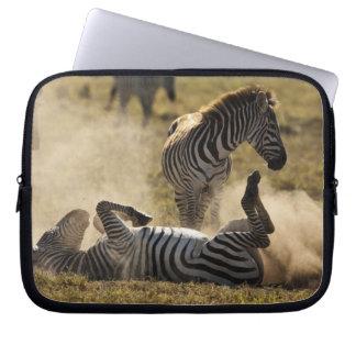 Ngorongoro Crater, Tanzania, Common Zebra, Equus Laptop Sleeve