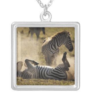 Ngorongoro Crater, Tanzania, Common Zebra, Equus Silver Plated Necklace
