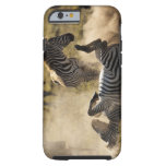 Ngorongoro Crater, Tanzania, Common Zebra, Equus Tough iPhone 6 Case