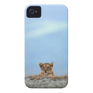 Ngorongoro Crater, Tanzania iPhone 4 Case