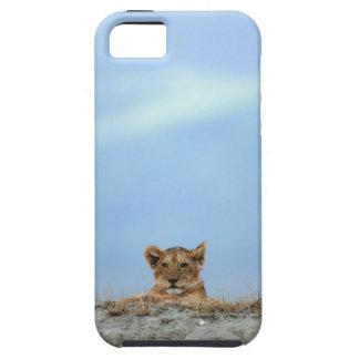 Ngorongoro Crater, Tanzania iPhone SE/5/5s Case