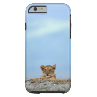 Ngorongoro Crater, Tanzania Tough iPhone 6 Case