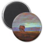 'Ngorongoro  Sunset' Magnets