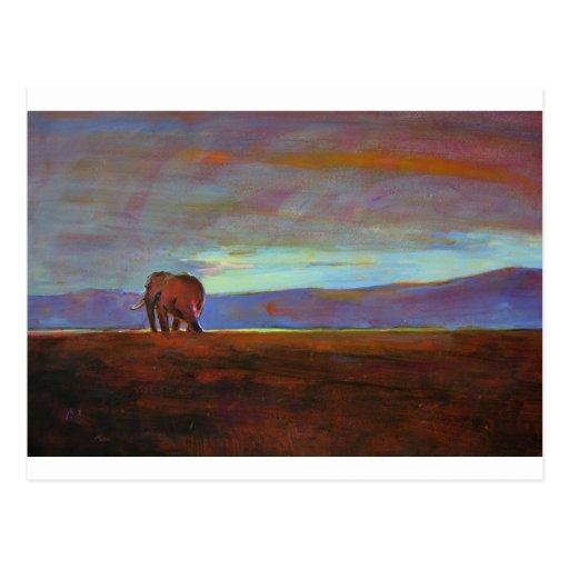Ngorongoro Sunset Post Card