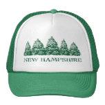 NH Winter Evergreens Mesh Hats