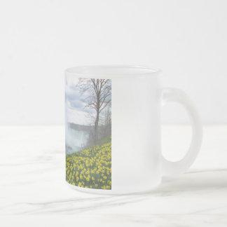 Niagara Falls Frosted Glass Mug