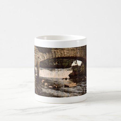 Niagara Falls Goat Isle Mug