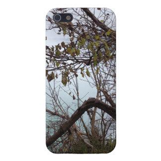Niagara Falls iPhone 5/5S Case