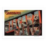 Niagara Falls, New York - Large Letter Scenes Postcard