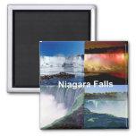 Niagara Falls Nueva York Imán