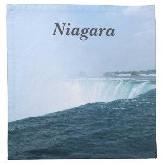 Niagara Falls Servilletas