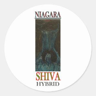 NIAGARA SHIVA HYBRID STICKER