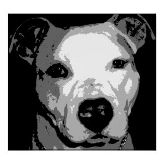 Nibs the Pit Bull Poster