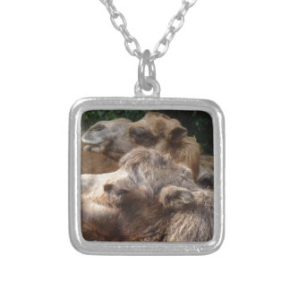 Nice Camels Square Pendant Necklace