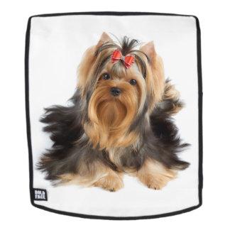 Nice dog backpack