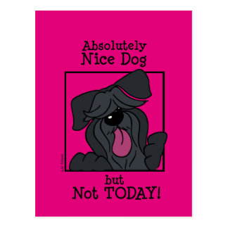 Nice dog - emergency but today postcard
