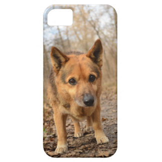 Nice Dog iPhone SE/5/5s Case