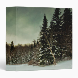 Nice hike over frozen lake in state of Vermont 3 Ring Binder