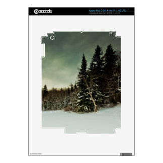 Nice hike over frozen lake in state of Vermont Decal For iPad 3