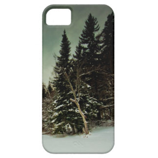 Nice hike over frozen lake in state of Vermont iPhone SE/5/5s Case